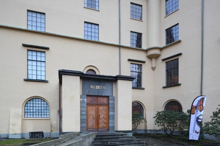 universitetsmuseet-2